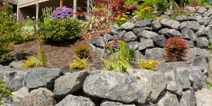 dreaneys_landscaping_7[1]