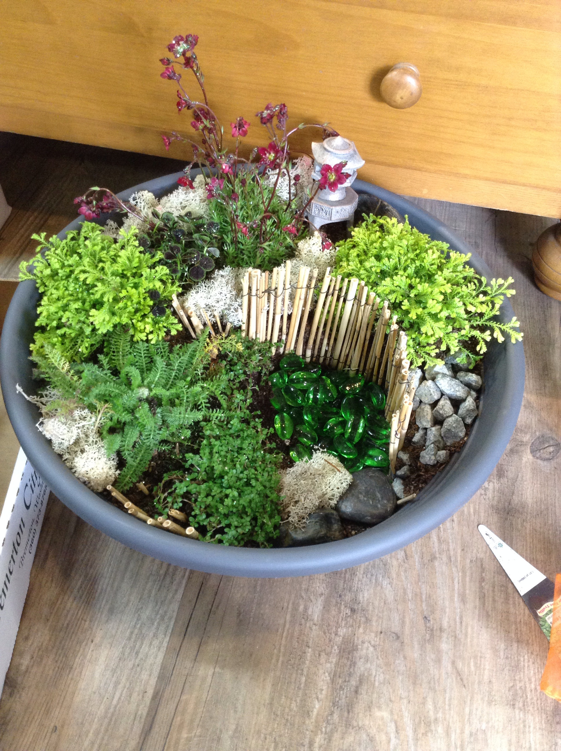 Past Event: Fairy Garden Class « Bremerton City Nursery